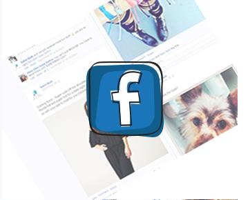 salon bark facebook